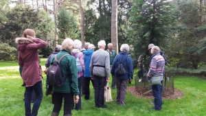 Volunteer guiding a group of visitors around Westonbirt Arboretum